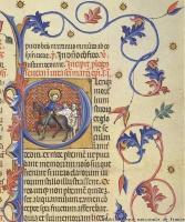 H. Martinus die zijn mantel deelt